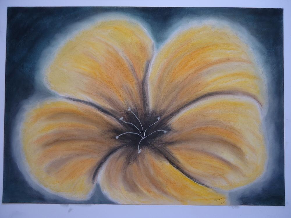 Gelbe Blume (yellow flower)
