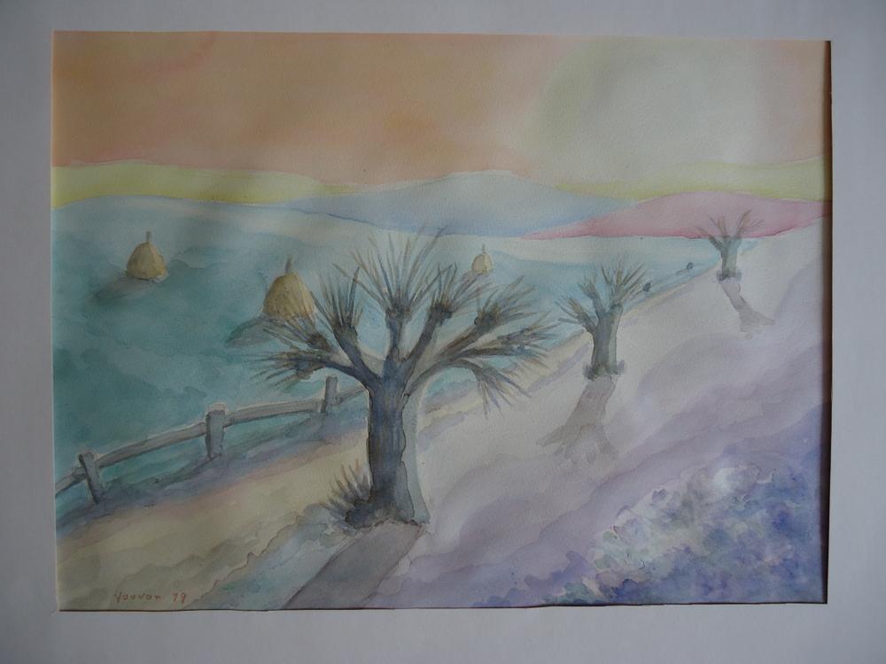 Alte Weiden (old willows)