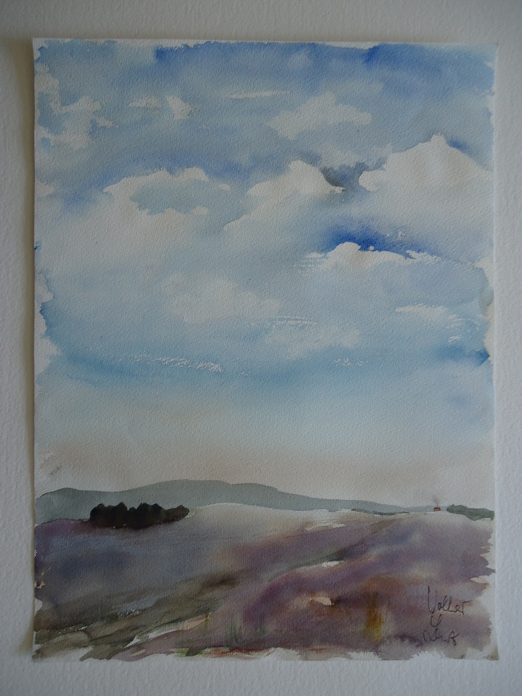 Gallery Watercolour 2 – 89